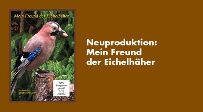 Neu 2019: Mein Freund der Eichelhäher