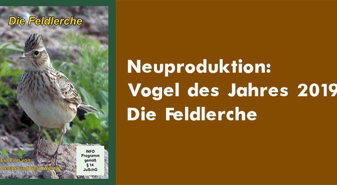 Neuproduktion: Vogel des Jahres 2019 – die Feldlerche