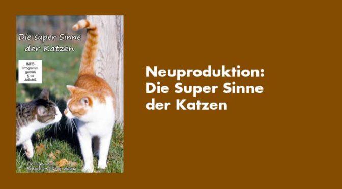 Neuproduktion 2020: Die super Sinne der Katzen (Felis silvestris) Privatlizenz
