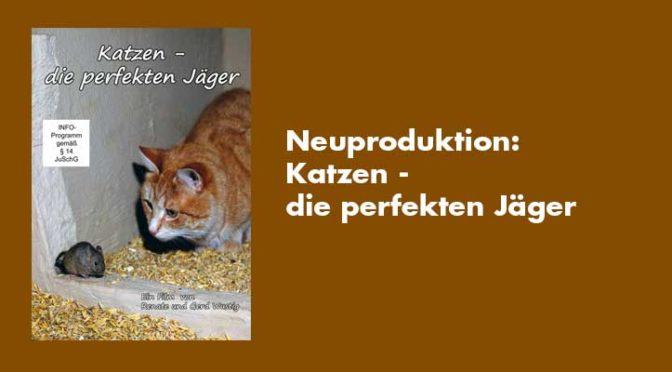 Neu 2020: Katzen – die perfekten Jäger (Felis silvestris) Privatlizenz